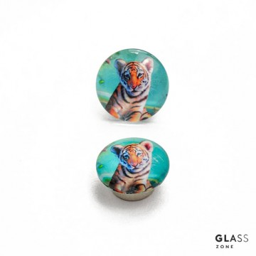 Magnes neodymowy - tygrys.